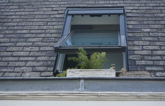 Fenster-l-ften