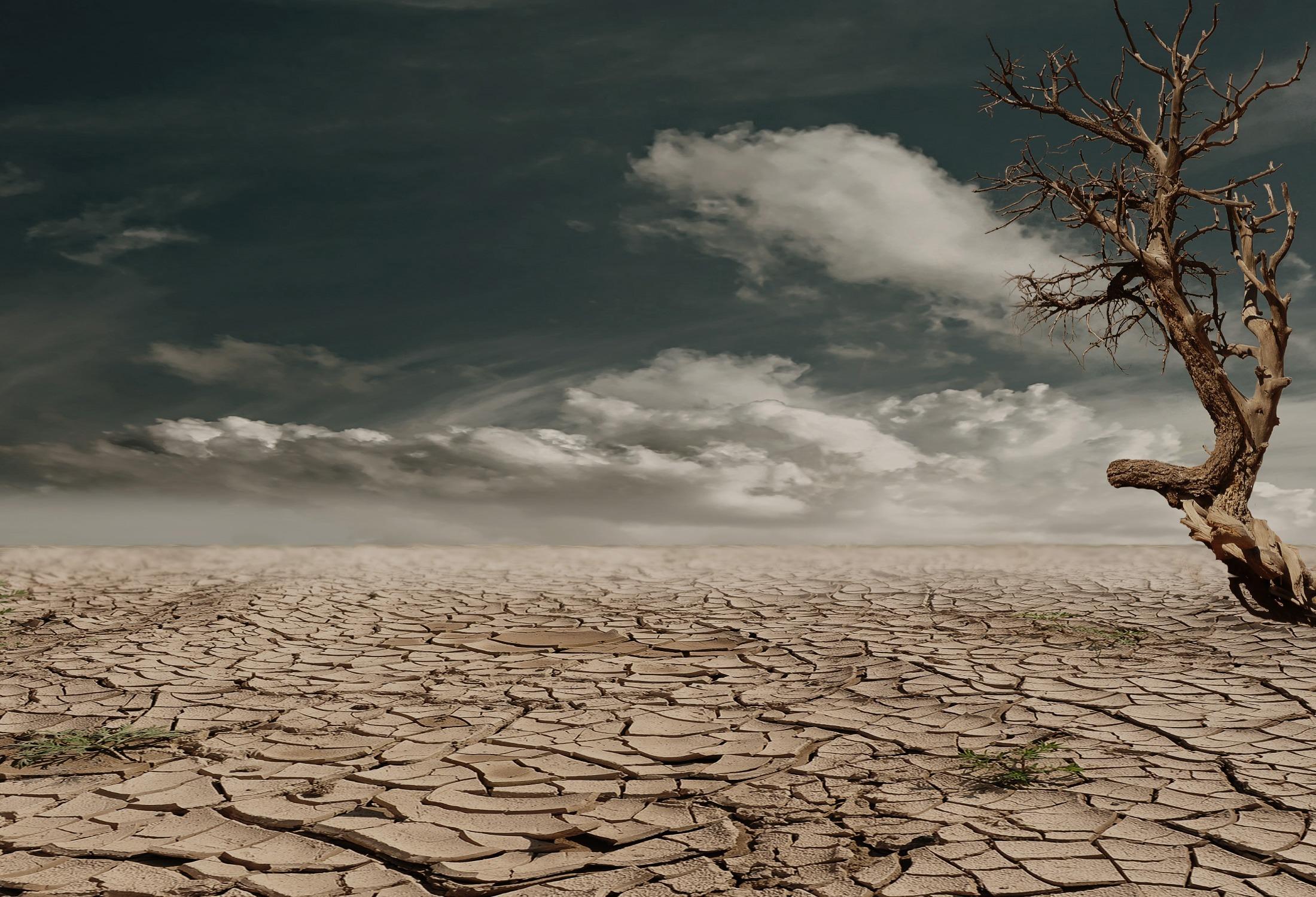 Die Auswirkungen Auf Holzfußböden Sind, Abhängig Von Holz  Und Verlegart,  Unterschiedlich Stark Bemerkbar, Meist Aber Unerfreulich.